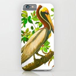Brown Pelican Vintage Illustration iPhone Case
