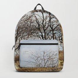 Mill Street Exit   401 Series   Landscape   Vintage   Nadia Bonello Backpack