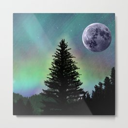 Northern Aurora Metal Print