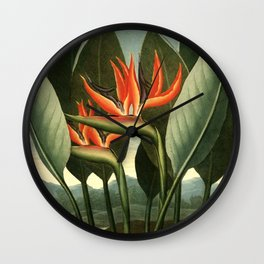 Birds of Paradise : Temple of Flora Wall Clock