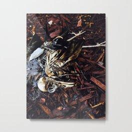 Decomposition Metal Print