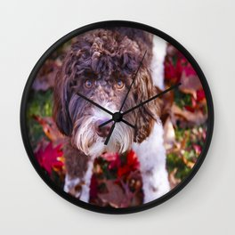 Labradoodle In Autumn Wall Clock