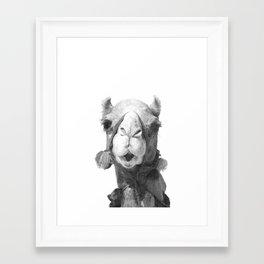 Black and White Camel Portrait Framed Art Print