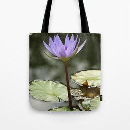 Beauty At The Pond Tote Bag