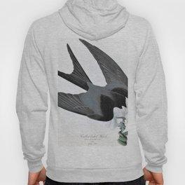 Swallow-tailed Hawk - John James Audubon Hoody