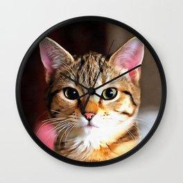 Artistic Tabby Cat Kitten Portrait Wall Clock
