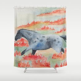 Indian Paintbrush Dakota Horse Shower Curtain