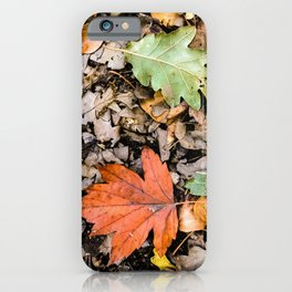 Autumnal leaves on the ground iPhone Case