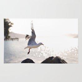 Seagull takes flight over Dunedin's MacAndrew Bay Rug