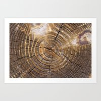 tree rings Art Prints featuring Tree Rings by Kimsey Price