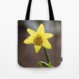 Daffodil II Tote Bag