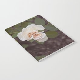 The Last Blossom (Autumn Rose) Notebook