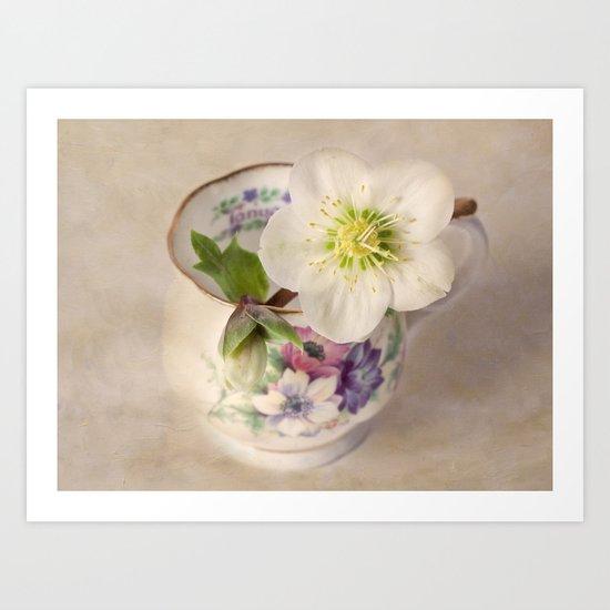 January Flower Art Print