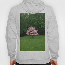 Pink Cherry Tree in a Sea of Green Hoody