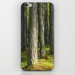 Forest II. iPhone Skin