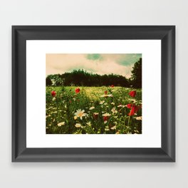 Poppies in Pilling Framed Art Print
