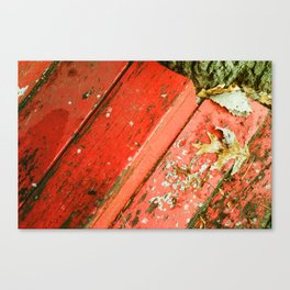 Winter 2 Canvas Print