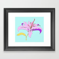 Lily III Framed Art Print