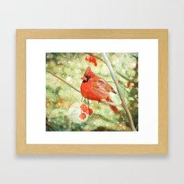 Cardinal Framed Art Print