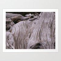 zen driftwood Art Print