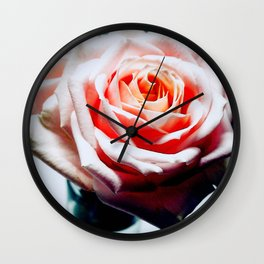 Adorable White and Pink Rose Wall Clock