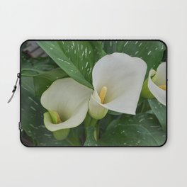 white pink colored calla lily in the garden Laptop Sleeve