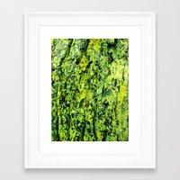 moss Framed Art Prints featuring Moss by kirstenariel