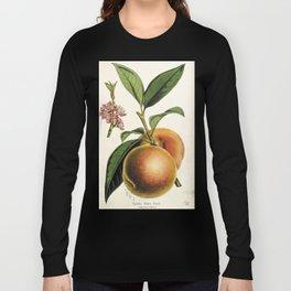 A peach plant - vintage illustration Long Sleeve T-shirt