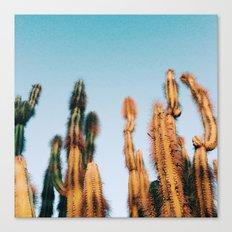 dr. seuss cacti Canvas Print