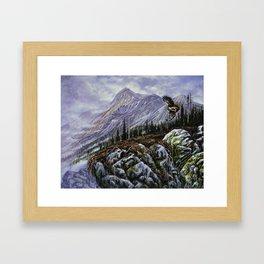 Redtail Hunter Framed Art Print