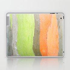 Retro Wood Laptop & iPad Skin