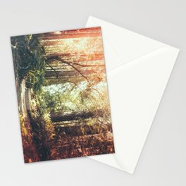 Beautiful California Redwoods Stationery Cards