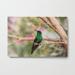 Bird - Photography Paper Effect 001 Metal Print