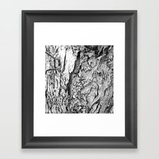 Tree Bark Black and White Framed Art Print