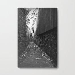 Narrow Way Metal Print