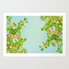Blush Pink Camellias with Lime on Aqua Art Print