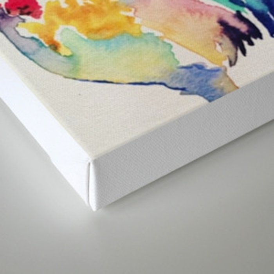 Chicken Canvas Print