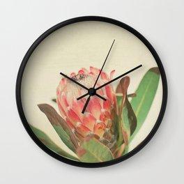 Pink Ice Wall Clock