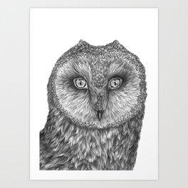 Little Barn Owl Art Print