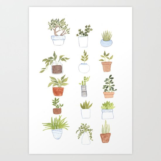 Potted Plants by foxflowers