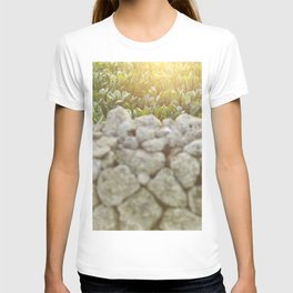 Sunset in Italy, fine art, landscape photo, Sicily photography, Puglia, Apulia, nature lover, love T-shirt