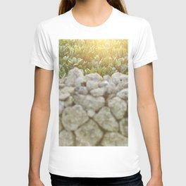 Sunset in Italy, fine art, landscape photo, Sicily photography, Puglia, Apulia, nature lover, love T-shirt