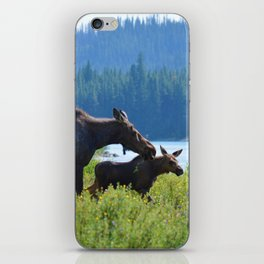 Mother moose & calf at Maligne Lake in Jasper National Park iPhone Skin