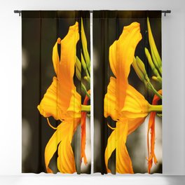 Daylily Portrait Blackout Curtain