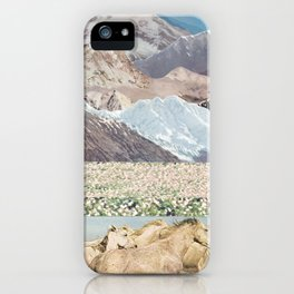 Washes iPhone Case