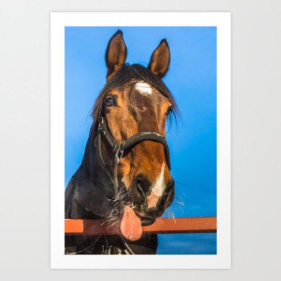 Horse Albert Art Print