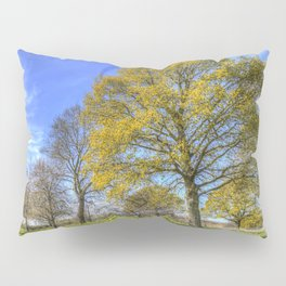 Summertime Farm England Pillow Sham