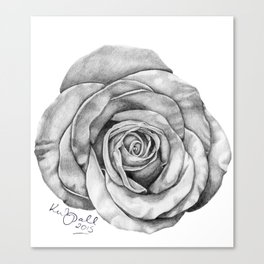 Rose Drawing Canvas Print
