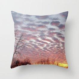 Winter sunset panorama - Hoyt Park, Madison, WI Throw Pillow