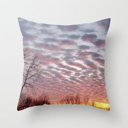 Winter sunset panorama - Hoyt Park, Madison, WI Throw Pillow